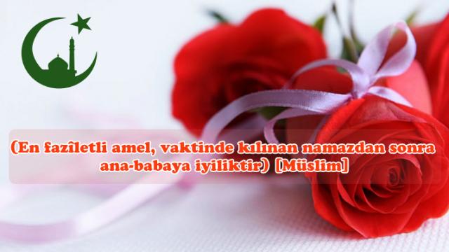 islamda-anne-baba-hakki.png