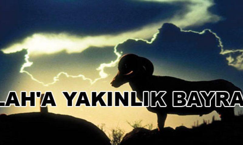 kurban2014bayrami.jpg